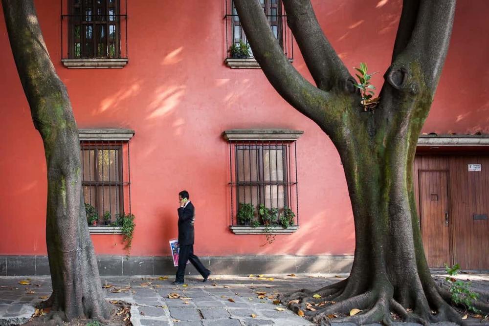 Frida Kahlo, Latin Artist, KINDR'D Magazine, KINDR'D, KOLUMN Magazine, KOLUMN